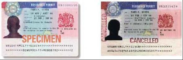 You will be able to employ anyone with this status if the date shown on their passport endorsement or stamp has not expired.