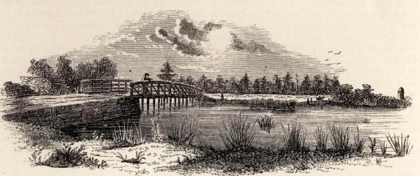 The Battle of Great Bridge The Battle of Great Bridge was the first land battle of the American Revolution
