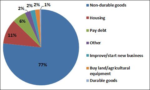 Figure 16: Use of Remittances among Migrants who Returned to Mexico between 1993 and 2010 consumption of non-durable goods and rent payments, 11% reported remittances are spent on housing (purchases