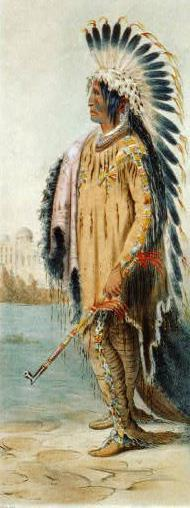Native Americans and Early Westward Expansion Native Americans increasingly squeezed off their lands Pressure mounted to