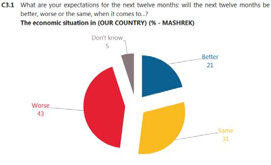Base: Respondents Maghreb (N=3,028) Base: Respondents Mashrek (N=4,127) There has been little change in the proportion who thinks the economic situation will be better in the next 12 months, compared
