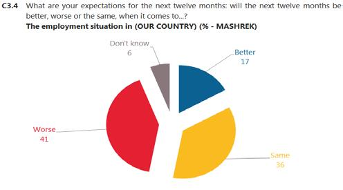 Respondents in Maghreb are also much more optimistic about the employment situation in their country the next 12 months 36 : 38% say it will be better, compared to 17% in Mashrek.
