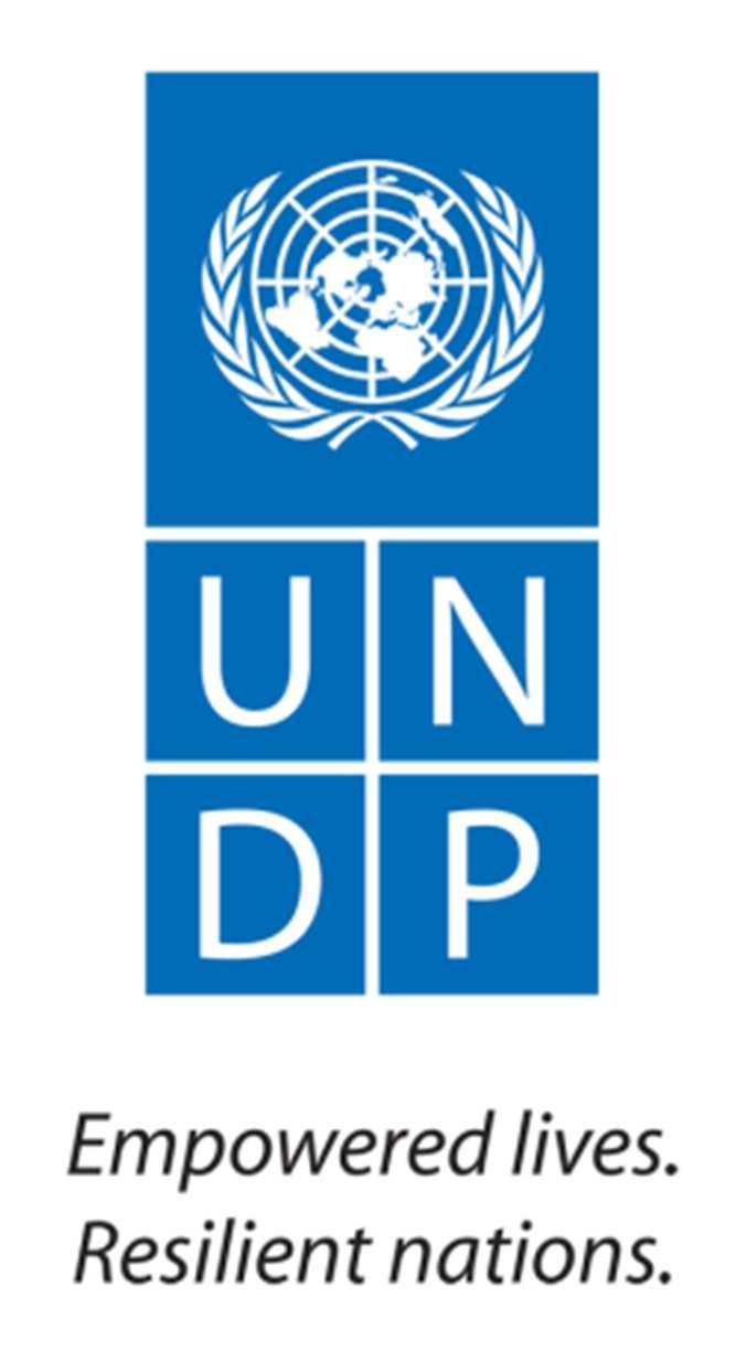 United Nations Development Programme REQUEST FOR QUOTATION (RFQ) REFERENCE: RFQ/KRT/12/089 DATE: 07/08/2012 Dear Sir / Madam: You are kindly requested to submit a quotation for the following goods.