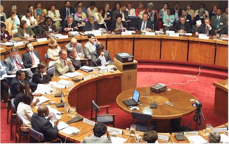 ACTIVITIES OF SUBSIDIARY BODIES Committee of the Whole Twenty-third session of the Committee of the Whole (New York, 16 February 2005) Caribbean Development and Cooperation Committee (CDCC)