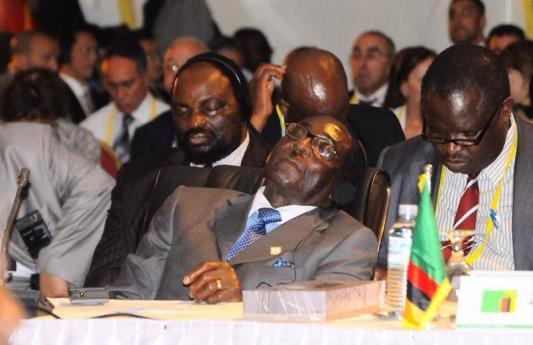 Picture 7:4 President Mugabe sleeping at a conference and the topical mansion.