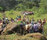 jumbo crisis is staring at AOdisha when human toll in the State owing to man elephant conflict has grown by an elephantine 54 per cent last fiscal to propel Odisha to the top in the dubious list in