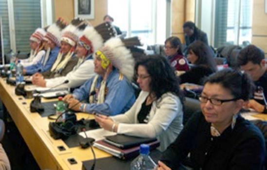 The UN Declaration on the Rights of Indigenous Peoples and the CERD: A Strong Framework to Combat Racial Discrimination,