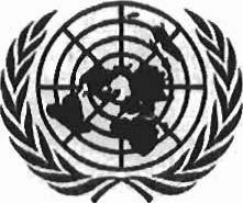 United Nations Security Council Distr.