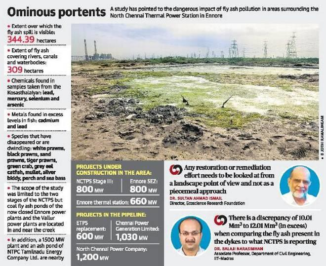The expert committee reviewed the environmental impacts of coal ash pollution on Ennore creek and areas surrounding North Chennai Thermal Power Station (NCTPS) at Ennore A total of 20 samples of